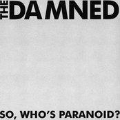 So, Who's Paranoid?