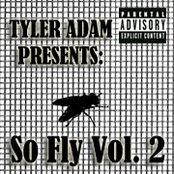 So Fly Mixtape Vol. 2
