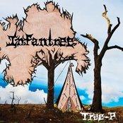 Tree-P