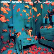 album Revenge Of The Goldfish by Inspiral Carpets