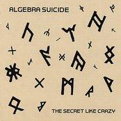 The Secret Like Crazy