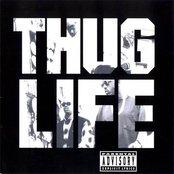Thug Life (Lossless)