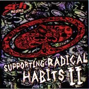 SRH Presents - Supporting Radical Habits II
