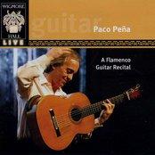 A Flamenco Guitar Recital