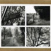 Haunted Woodland, Vol. 1