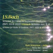 Sonatas for Violin & Keyboard, Volume II