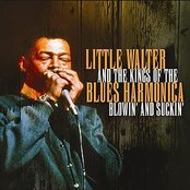 Little Walter And The Kings Of The Blues Harmonica