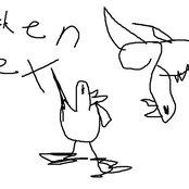 Chicken Sex