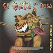 El Gato De Rosa