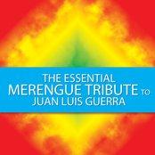 The Essential Merengue Tribute to Juan Luis Guerra