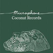Microphone- Single