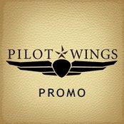Pilot Wings Promo