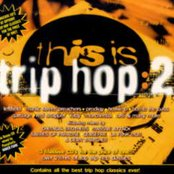 This Is Trip Hop 2 (disc 2)