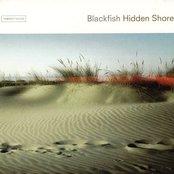 Hidden Shore