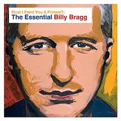 Must I Paint You a Picture?: The Essential Billy Bragg