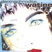 Dermaphrodite