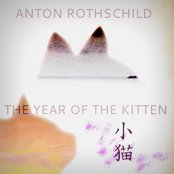 The Year of the Kitten