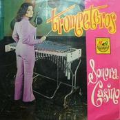 Musica de Sonora Casino