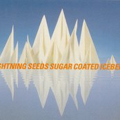 Sugar Coated Iceberg (Single) 1