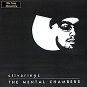 The Mental Chambers