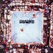 Sharko III