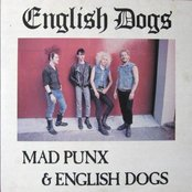 Mad Punx & English Dogs