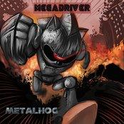 MetalHog