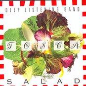 Tosca Salad