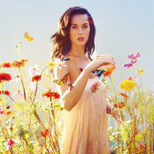 Katy Perry - The One That Got Away Songtext und Lyrics auf Songtexte.com