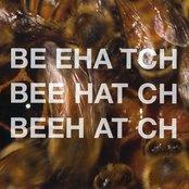 Beehatch