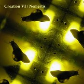 Creation VI / Nemertis