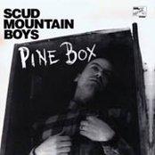 Pine Box