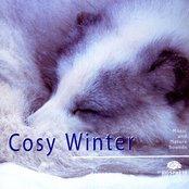 Cosy Winter