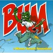 Wanna Smash Sensation!