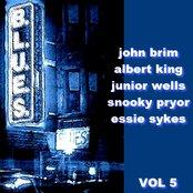 The Blues  Volume 5