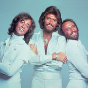 Bee Gees setlists