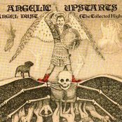 Angel Dust (The Collected Highs 1978-1983)