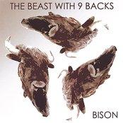 The Beast With Nine Backs