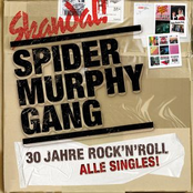 album 30 Jahre Rock'n'Roll by Spider Murphy Gang