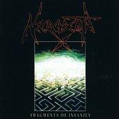 Fragments Of Insanity