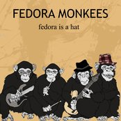 Fedora Is A Hat