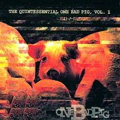 The Quintessential One Bad Pig, Vol. 1