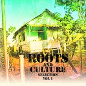 Roots & Culture Selection Volume 1