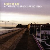 Light of Day: A Tribute to Bruce Springsteen (disc 2)