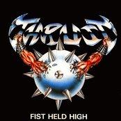 Fist Held High