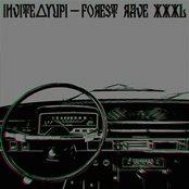 forest rave XXXL