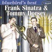 """Bluebird""""s Best"""
