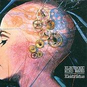 Electronic Mind Waves