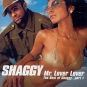Mr. Lover Lover: The Best of Shaggy Part 1