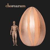 Chorearum